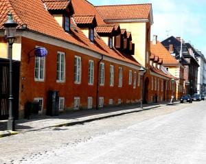 Nielsen's home, with  Børups Hojskole just behind