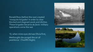 Anti Malaria treatment in Kent, 1914. and a dike south of Reculver, August 2014
