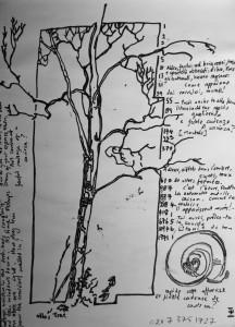 Ullas' Tree 2005