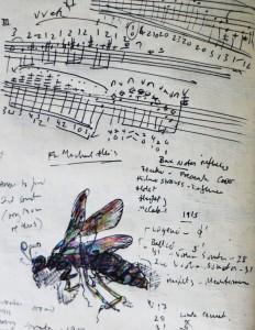 Elgar's Wasp Summer 2003