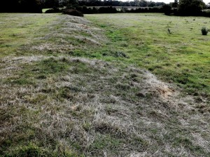 Earthwork in the Chilterns. 1 10 14