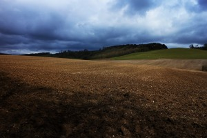 After nearly two years with my feet on this path, it is impossible not to look at these now familiar landscapes, and the change of seasons, through the lens of the women and men of World War I, who have taught me so much. Towards Westwell, birds rising from the freshly sown field. 7 4 16