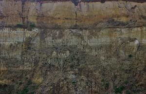 Strata. Bishopstone Cliff April2016